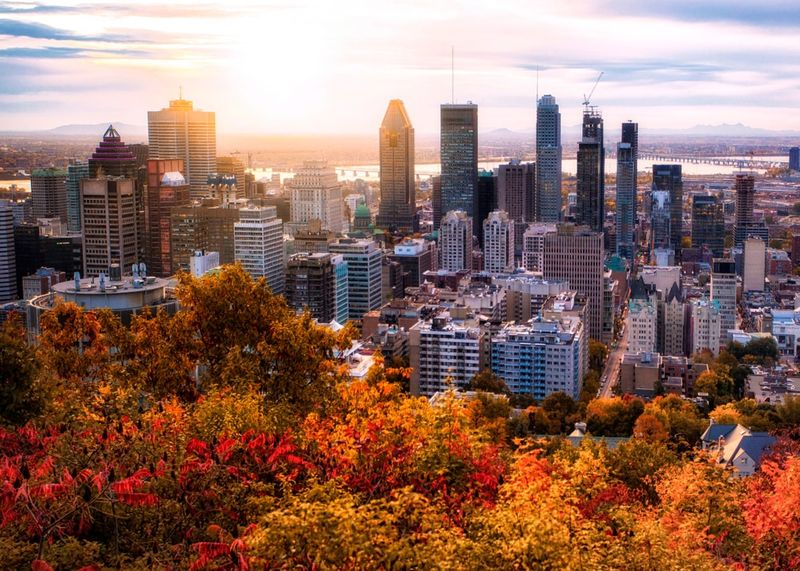 Montreal sunrise with colourful leaves Canada