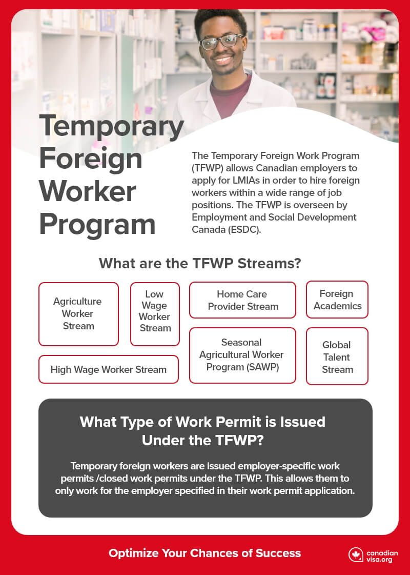 what-is-the-temporary-foreign-wroker-program-infographic