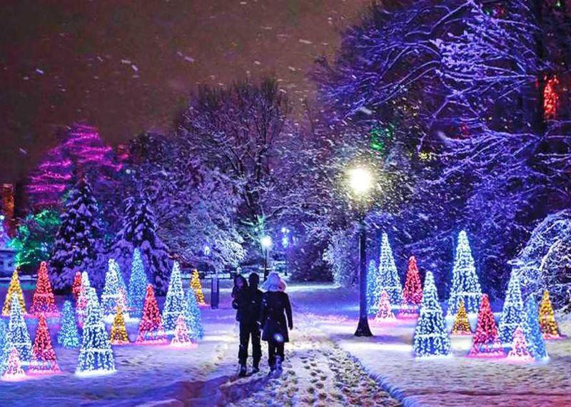 The Winter Festival of Lights Niagara Falls