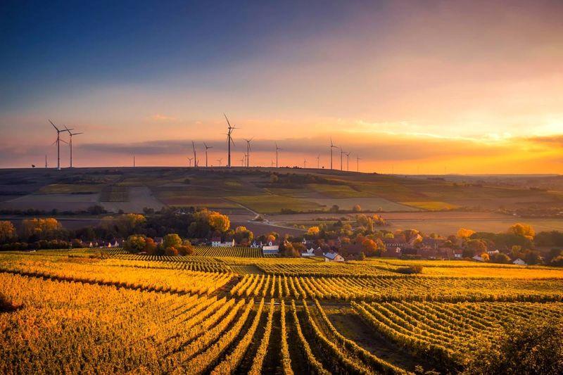 rural farmland at sunset