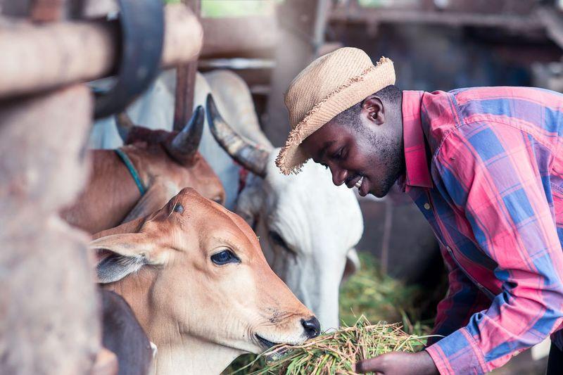 Farmworker in Canada